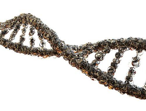 Usos de CRISPR
